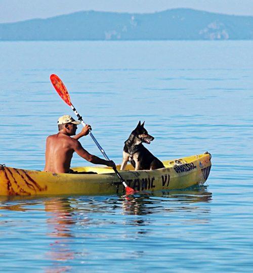 boat, oars, man